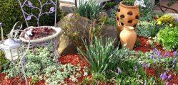 Cómo tener un hermoso jardín con poco dinero