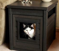 Decoración y mascotas, muebles decorativos